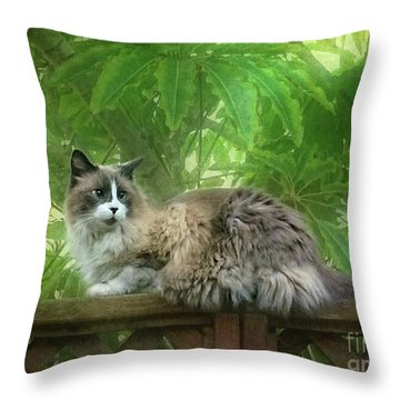 Cat On The Railing Throw Pillow