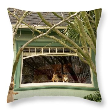 Cat Pals Waiting Throw Pillow