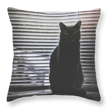 Cat Portrait 1 Throw Pillow