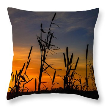 Throw Pillow featuring the photograph Cat Tails At Sunrise  by John Harding