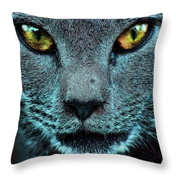 Cat With Golden Eyes Throw Pillow