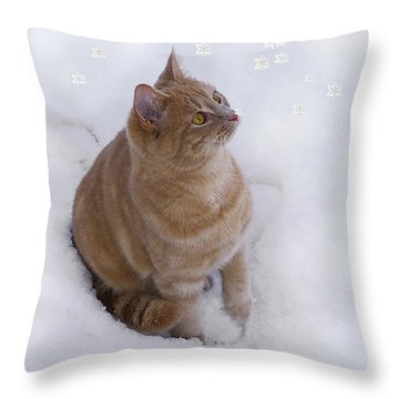 Cat With Snowflakes Throw Pillow