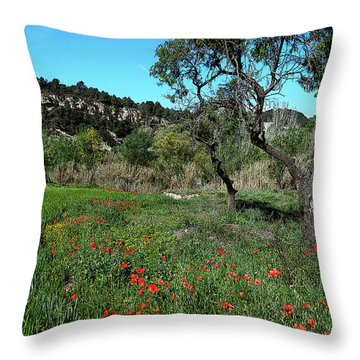 Catalan Countryside In Spring Throw Pillow