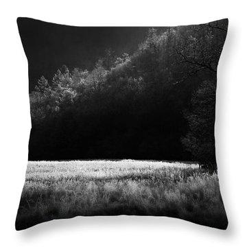 Cataloochee Morning Throw Pillow