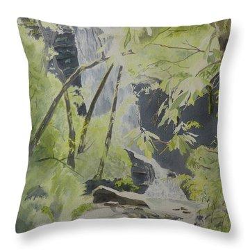 Catawba Falls - The Upper Cascade Throw Pillow