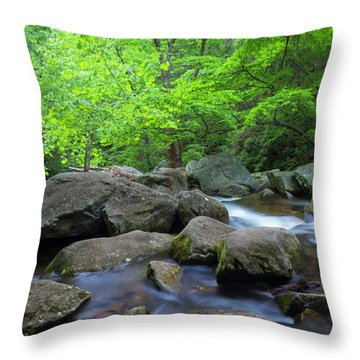 Throw Pillow featuring the photograph Catawba Stream And Rocks Panorama by Ranjay Mitra