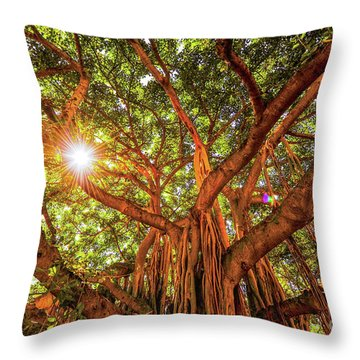 Catch A Sunbeam Under The Banyan Tree Throw Pillow