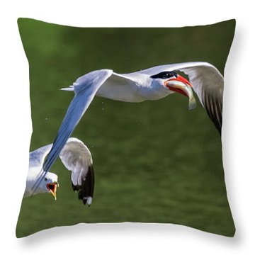 Catch Of The Day - 2 Throw Pillow