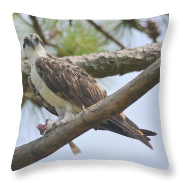 Catch Of The Day.... Throw Pillow