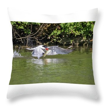 Catch Of The Day - 1 Throw Pillow