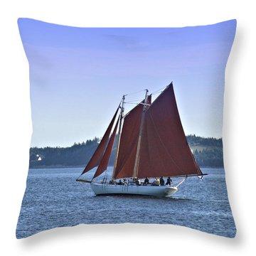 Catch The Breeze Throw Pillow