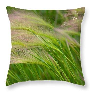Catching A Breeze Throw Pillow by Scott Kingery