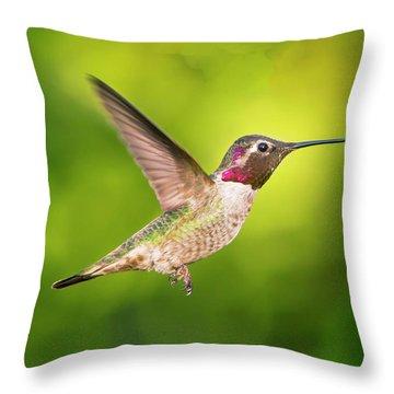 Hummingbird Catching Air Large Canvas Art, Canvas Print, Large Art, Large Wall Decor, Home Decor Throw Pillow
