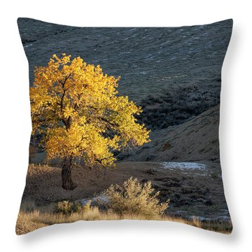 Catching Last Rays Throw Pillow