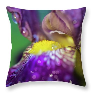 Catching Raindrops  Throw Pillow