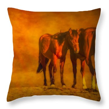 Catching The Last Sun Digital Painting Throw Pillow