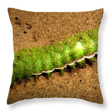 Throw Pillow featuring the photograph Caterpillar 009 - Macro by George Bostian