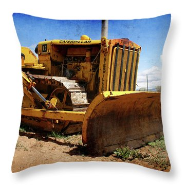 Caterpillar Twenty Two Throw Pillow by Ernie Echols