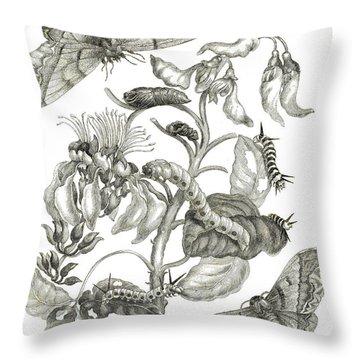 Caterpillars, Butterflies, And Flower Throw Pillow