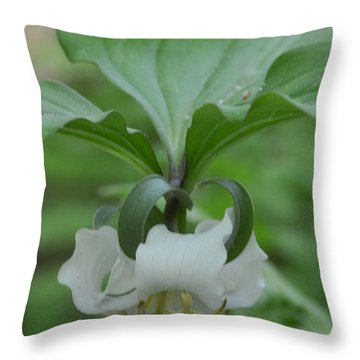 Throw Pillow featuring the photograph Catesby Trillium by Linda Geiger