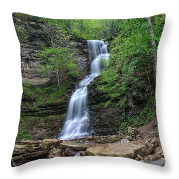 Cathedral Falls Throw Pillow