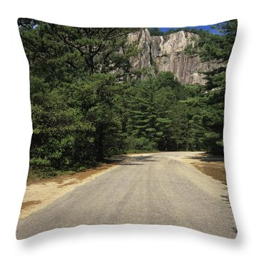 Cathedral Ledge State Park - Conway New Hampshire Usa Throw Pillow by Erin Paul Donovan
