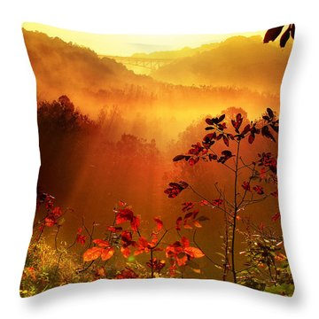 Cathedral Of Light - Special Crop Throw Pillow