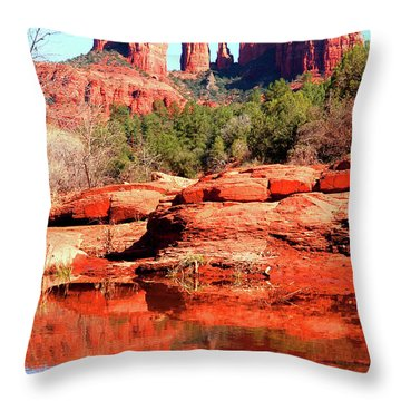 Throw Pillow featuring the photograph Cathedral Reflections 2 by Howard Bagley