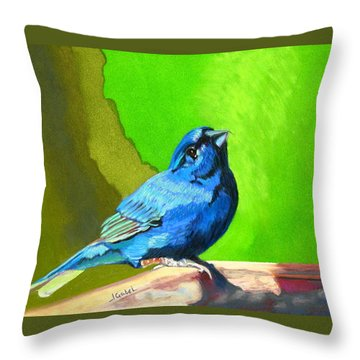 Catherine's Springtime Throw Pillow
