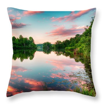 Cathey's Reflection Throw Pillow