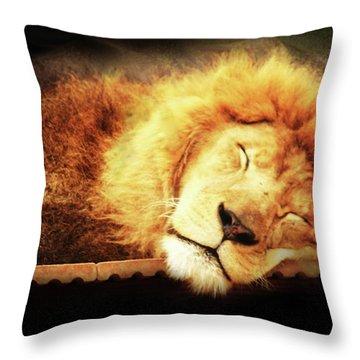 Catnip O.d. Throw Pillow by Kim Henderson