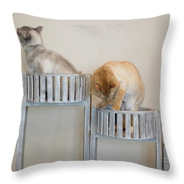 Cats In Baskets Throw Pillow