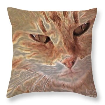 Cats Know Throw Pillow