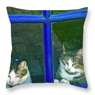 Cats On Baylor Street Throw Pillow