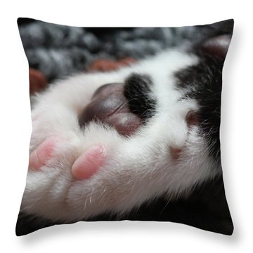 Throw Pillow featuring the photograph Cats Paw by Kim Henderson