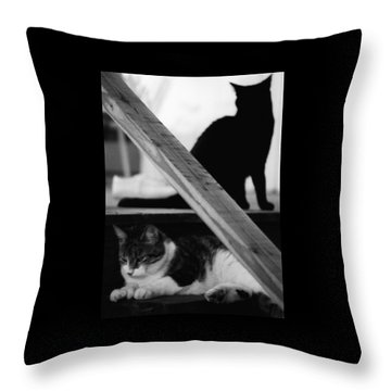 Cats Pose For Money And Fame Throw Pillow