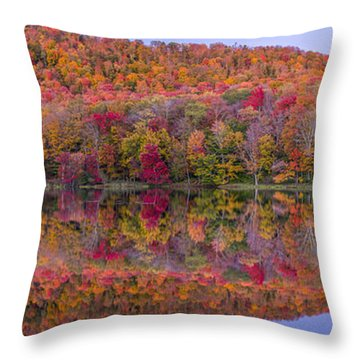 Throw Pillow featuring the photograph Catskill Panorama 2 by Mark Papke