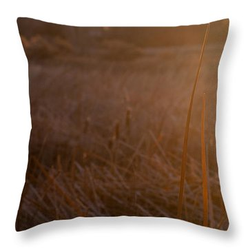 Throw Pillow featuring the photograph Cattail At Sunrise by Monte Stevens