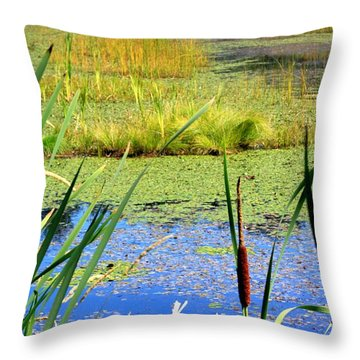 Cattail Throw Pillow