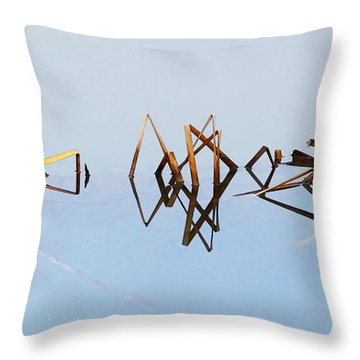 Cattail Reflections Throw Pillow
