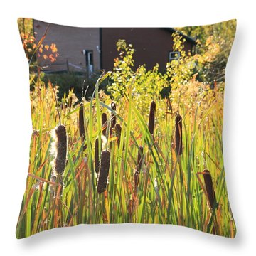 Cattails And Barn Throw Pillow