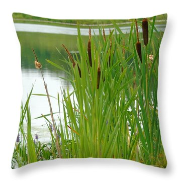 Cattails And Still Water Throw Pillow