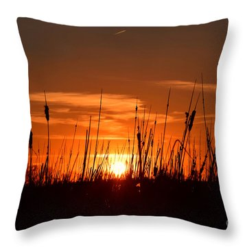 Cattails And Twilight Throw Pillow