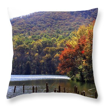 Cattails By Lake With Sharp Top In Background Throw Pillow