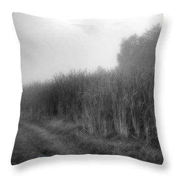Throw Pillow featuring the photograph Cattails In The Fog by Michael Colgate