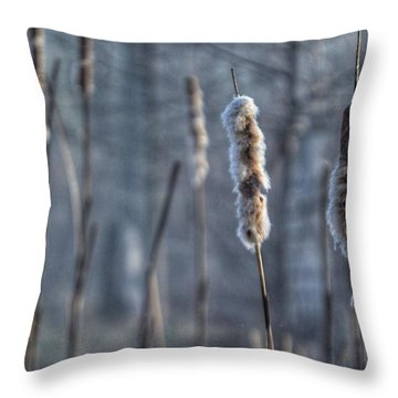Cattails In The Winter Throw Pillow by Sumoflam Photography