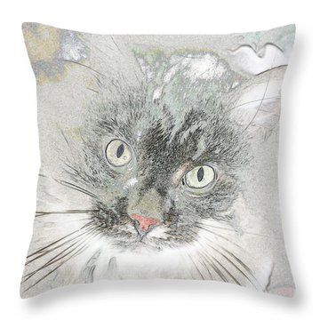 Cattitude Throw Pillow by Rhonda McDougall