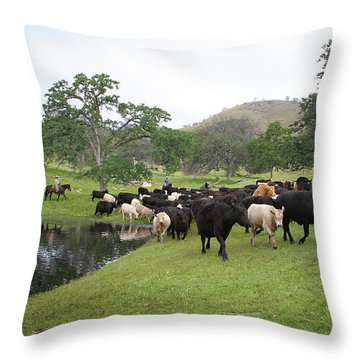 Cattle Throw Pillow by Diane Bohna
