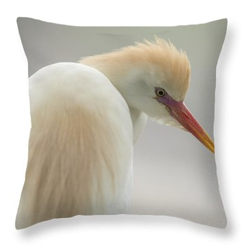 Cattle Egret Profile Throw Pillow