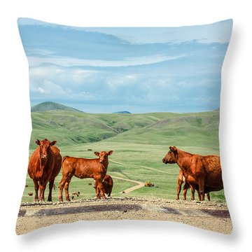 Cattle Guards Throw Pillow